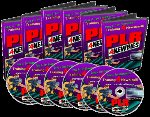 Product picture PLR For Newbies Video Series, Make Money from Your Website